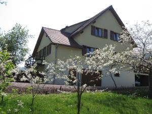 Chambre d'Hôtes Chez Odile-Le Clos de la Cerisaie Thannenkirch