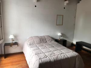 Cama ou camas em um quarto em En el corazon de Mendoza departamento