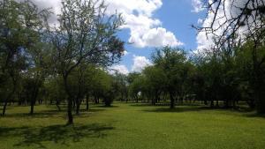 Un jardín fuera de Cabaña Anita