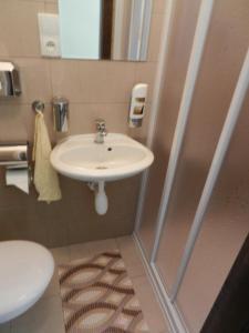 Hotel Beranek - Image4