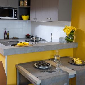 مطبخ أو مطبخ صغير في أداغيو باريس 15 للشقق الفندقية بخدمة ذاتية