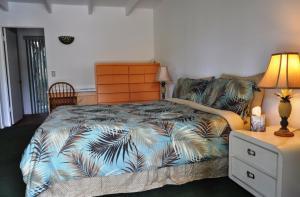 Vista Grande Resort - A Gay Men's Resort