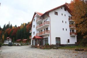 Hotel Paltinis - Image1