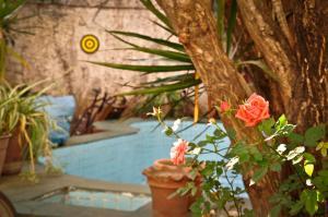 Punto Clave Hostel Rosario