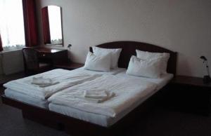 Hotel Bílý Kůň - Image4