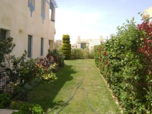 Two-bedroom Apartment In Mena - Unit 176, El Alamein, 3