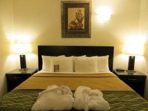 Comfort Inn & Suites Downtown Edmonton Edmonton