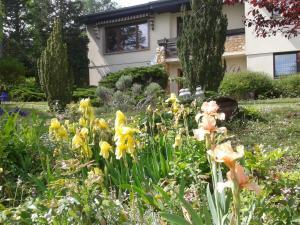 Maison d'Hôtes Vers les Cent Ciels Obernai