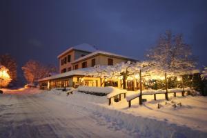 Hotel restaurant Les Tilleuls Saint-Jorioz