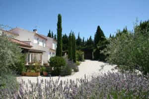 Mas de l'Estello B&B Saint-Rémy de Provence