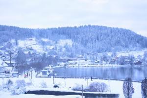 Hotel Restaurant L'Après Ski Gérardmer
