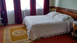 Hotel Alerce Nativo