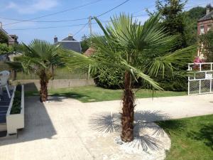 Gîte des 2 palmiers Saint-Léonard