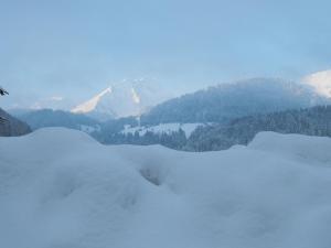 Chalet Le Mont Abondance Abondance