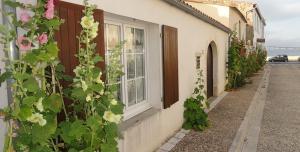Maison de vacances Rue de palmes Rivedoux-Plage