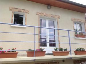 Maison la Violette Nanterre