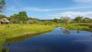 La Penal Camping y Amazonia