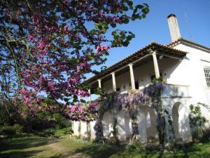Quinta da Casa Velha Agroturismo - Image1