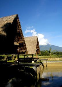 Desa Sawah