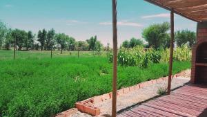 Complejo Turistico Pampa Verde
