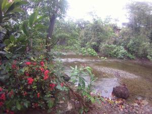 Ecoparque Agua Selva