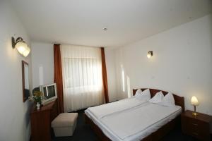 Hotel Paltinis - Image3