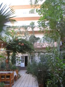 Amon Hotel Louxor