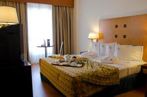 VIP Executive Santa Iria Hotel - Image3