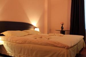 Hotel Romula - Image3