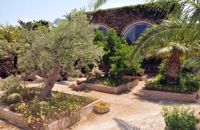 Agriturismo Zinedi - Pantelleria