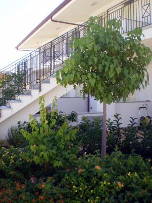 Medimare Residence Club - Patti - Foto 10