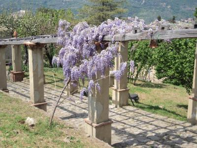 Agriturismo Il Daino - San Piero Patti - Foto 14