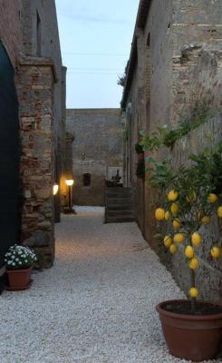 Turismo Rurale Al Benefizio - Monforte San Giorgio Marina - Foto 6