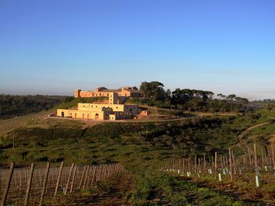 Wine Relais Feudi Del Pisciotto - Niscemi - Foto 13