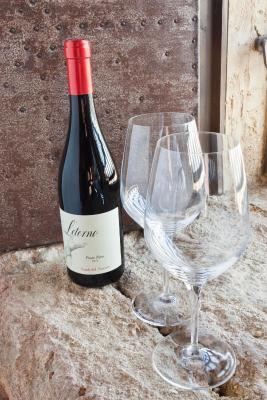 Wine Relais Feudi Del Pisciotto - Niscemi - Foto 17