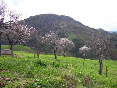 B&B San Giuseppe - Nissoria - Foto 34