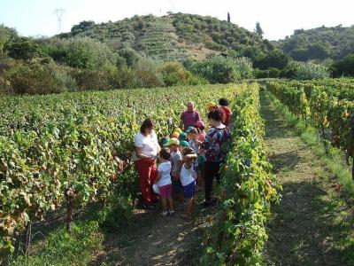 Agriturismo Parra - Santa Lucia del Mela - Foto 40