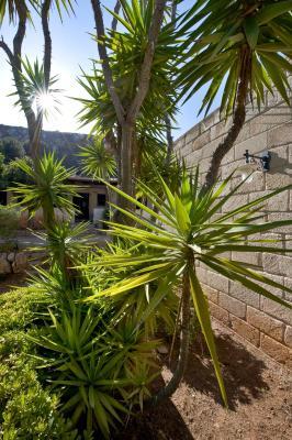 Miramare Residence - Favignana - Foto 10