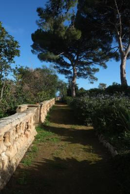 Villa Valguarnera - Bagheria - Foto 12