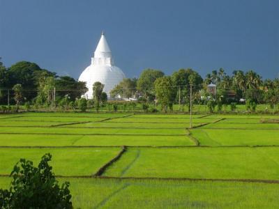 Nature Resort Tissamaharama Sri Lanka Booking Com
