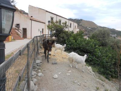 Turismo Rurale San Gaetano - Santa Teresa di Riva - Foto 31