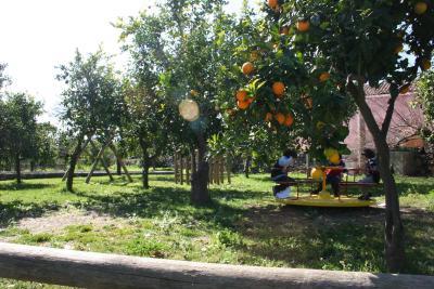 Galea Farm House - Riposto - Foto 33