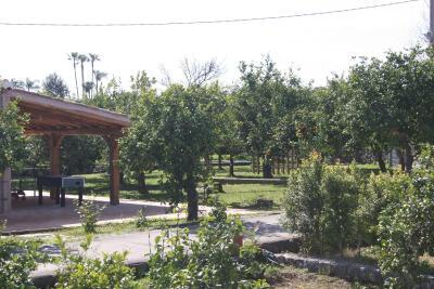 Galea Farm House - Riposto - Foto 45