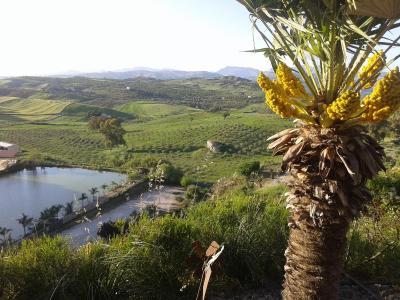 Ciuci's Manor - Aragona - Foto 11
