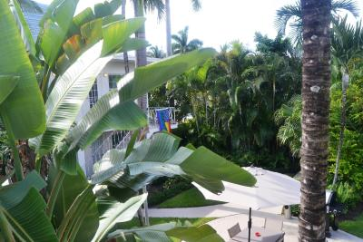 Top Deals Hotel Palm Plaza Gay Male Resrt Fort Lauderdale