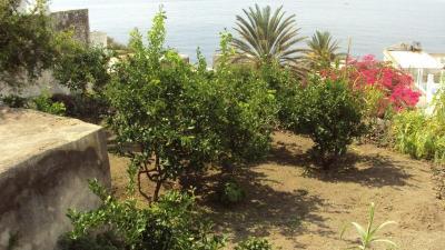 Affittacamere Mare Blu - Stromboli - Foto 20