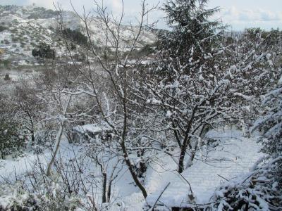 Agriturismo Etna-Mare - Piedimonte Etneo - Foto 18