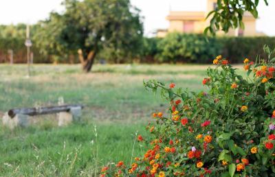 Agriturismo Il Gelsomino Ritrovato - Milazzo - Foto 14