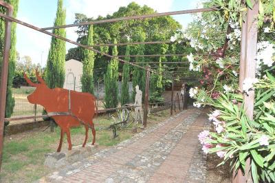 Agriturismo Fontanelle - San Filippo del Mela - Foto 2