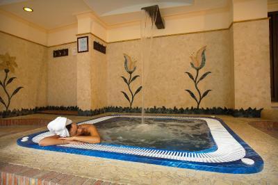 Airone Wellness Hotel - Zafferana Etnea - Foto 27